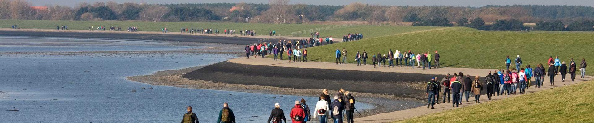 Tussen Slik en Zand: Wandelaars zigzaggen over de Waddenzeedijk op Ameland