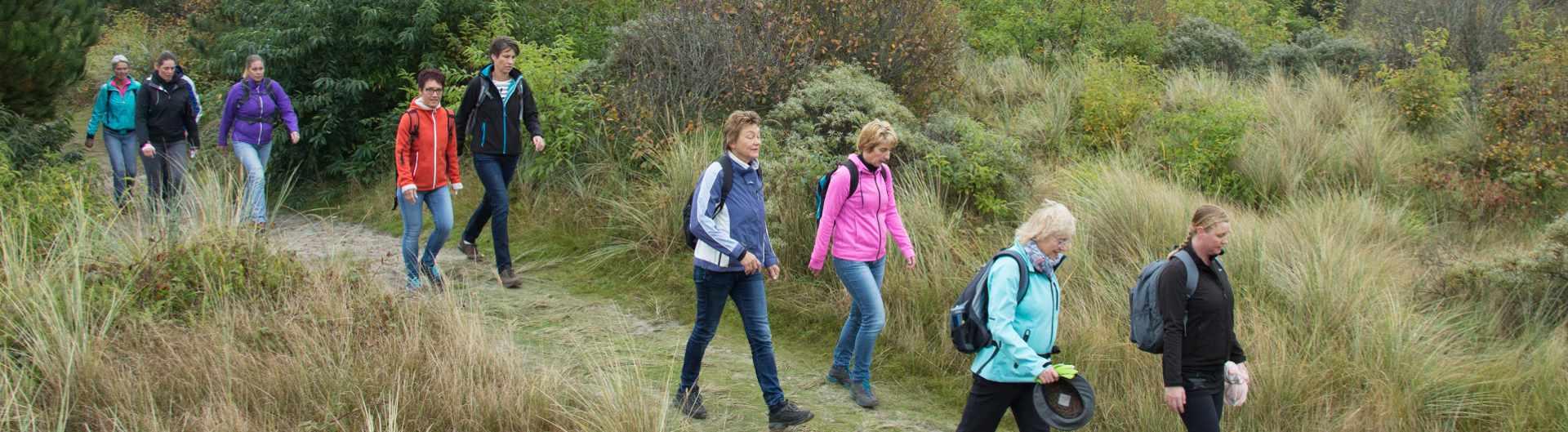 Tussen Slik en Zand: Deelnemers wandelen op het Hagendoornveld op Ameland