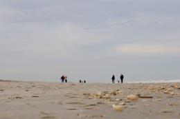 Tussen Slik en Zand 2017: Spoorzoeken in het werelderfgoed