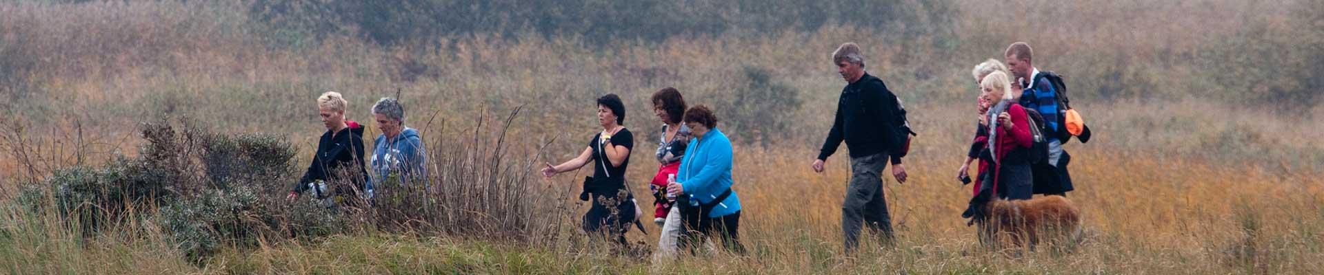 Tussen Slik en Zand: Deelnemers wandelen door de velden op Ameland